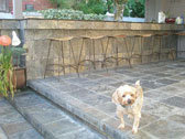 Concrete Patio & BBQ Areas